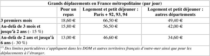 Grands déplacements en France métropolitaine par jour